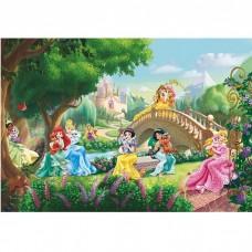 Фотообои бумажные Komar Princess Palace Pets 8-478 3,68х2,54 м