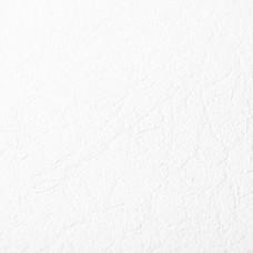 Обои виниловые на флизелиновой основе под покраску Палитра 3009-01
