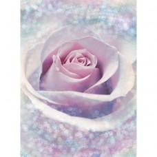 Фотообои флизелиновые Komar Delicate Rose XXL2-020 1,84х2,48 м
