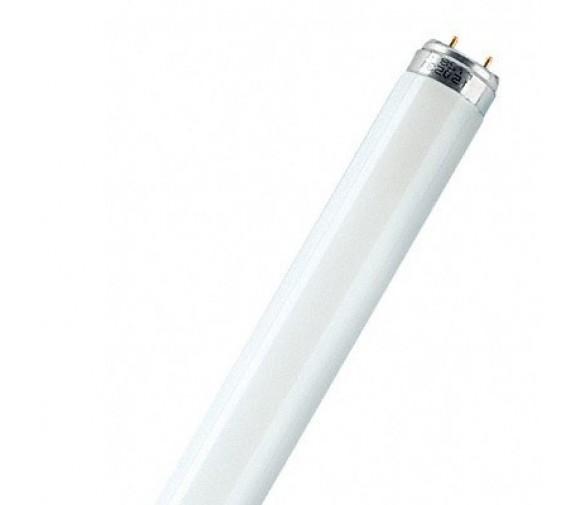 Лампа люминесцентная Philips TL-D G13 T8 872790081582500 36 W/33-640