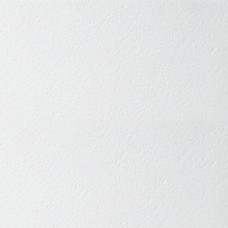 Armstrong Retail Board 600х600х12 мм