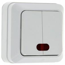 EKF Рим ENV10-123-10 двухклавишный с индикатором белый