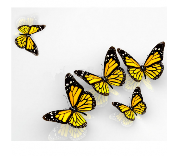 Панель потолочная ПВХ Novita 3D Бабочка 2500х250 мм 8 штук