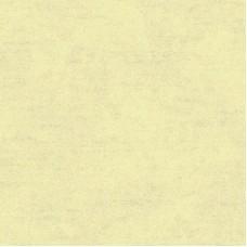 Обои флизелиновые Wallquest Bellagio FY40303