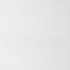 Armstrong Retail Tegular 600х600х14 мм