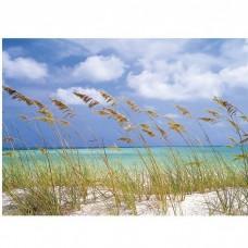 Фотообои бумажные Komar Ocean Breeze 8-515 3,68х2,54 м