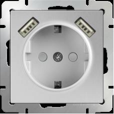 Werkel WL06-SKGS-USBx2-IP20 одноместный с USBх2 с заземлением и защитными шторкам серебряный