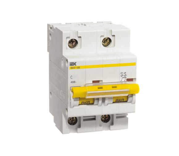 Автоматический выключатель IEK ВА47-100 2Р 100А С