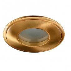 Novotech Aqua 369304 NT09 289 золото IP65 GX5.3 50W 12V